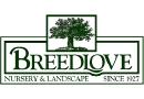 Medium breedlove nursery landscape in tyler tx