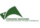 Medium chameleon